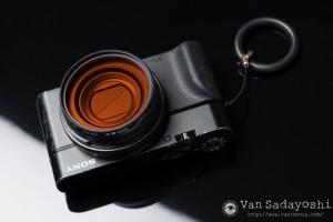 α6300+FE55mm F1.8ZAにて撮影。