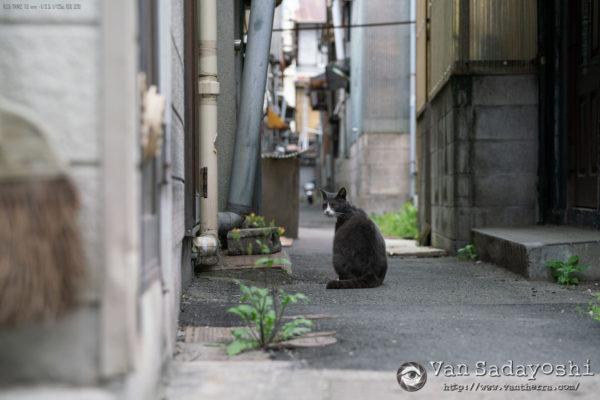 鬼怒川温泉合宿詳報