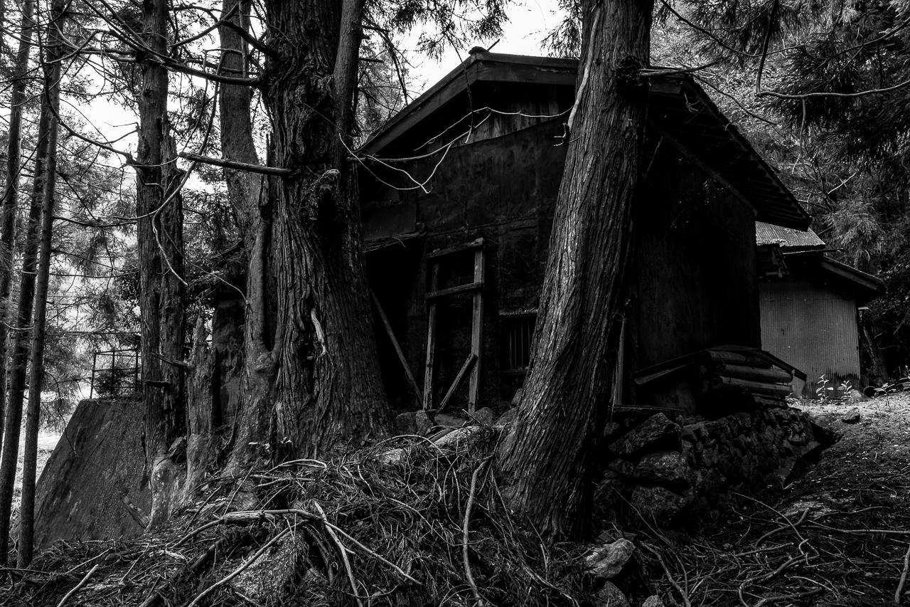 abandoned-1
